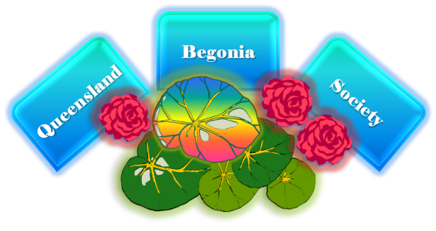 Queensland Begonia Society Logo