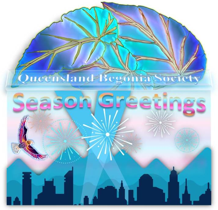 Queensland Begonia Society in Happy New Year and Season Greetings with City Skyline, Mountains, Spotlights and Fireworks